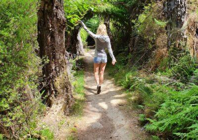 7_Neuseeland_Abel Tasman Nationalpark